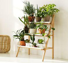 Grønn trapp – vekster – dyrking – nordisk design – grønt miljø – grønt interiør