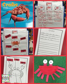 Learning about ocean animals!  Crabs!  Research, writing and labeling!