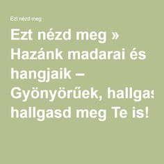 Ezt nézd meg » Hazánk madarai és hangjaik – Gyönyörűek, hallgasd meg Te is! Art For Kids, Crafts For Kids, Kindergarten, Preschool, Math Equations, Activities, Education, Learning, Day