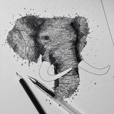 ALFRED BASHA — Elephant - Ink You can buy this drawing on my...