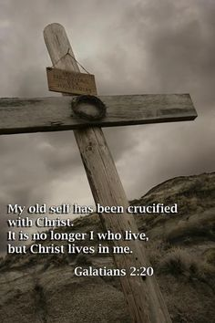 I have been crucified with Christ. It is no longer I who live, but Christ who lives in me. And the life I now live in the flesh I live by faith in the Son of God, who loved me and gave himself for me. Galatians 2:20