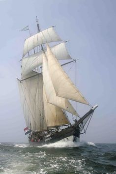 To travel by the real tall ship