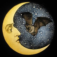 """Custom Made 12"""" Bat And Moon stained glass  by David Fode"""