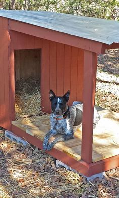 DIY Attempt: Country Dog House with Porch                                                                                                                                                                                 More