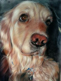 Lovely Gold Retriever Painting