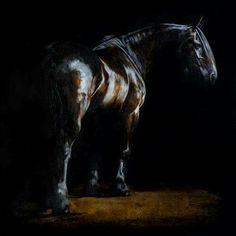 Tony o connor equine artist