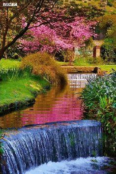 Garden on Ninfa, Italy