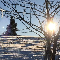 Schöne Aussicht und die Sonne  ist auch da..!! #bergsports #Skating #Langlauf #Kopffrei #durchatmen #gesund #natursport #nature #klareluft #goodlife #sun #dream #skiing #fun #snow #powder #beautiful #heimat #wonderful #rotesmoor #schnee #salomon #bischofsheimanderrhön