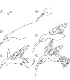 Draw a Hummingbird in Six Steps..then finish project with water color pencils and while oil pastels.
