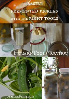 Easier fermented pickles with the right tools -- Joybilee Farm