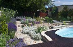 Mediterraner Garten mit Sandfläche und Polygonalplattenweg