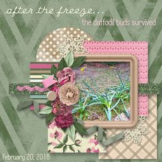 Time for Go Digital Scrapbooking's monthly Mixology!  For February, we have Winter Garden with absolutely beautiful colors that portray the promise of spring here, where it's been so cold throughout the winter months.  Scrapbookcrazy Creations By Robyn is contributing TEN pieces to this month's Mixology: http://www.godigitalscrapbooking.com/shop/index.php?main_page=index&manufacturers_id=178