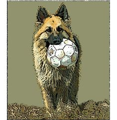 This is Theo our longhaired German Shepherd dog with his favourite football. This print is created using a poster digital effect giving it a textured appearance and a slightly wild look. Dog Portraits, German Shepherd Dogs, Sheep, How To Memorize Things, A4 Size, Bird, Pets, Dog Cat, Art Print