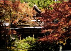 全部知ってる?米国CNNが選んだ『日本の最も美しい場所』31選 | RETRIP[リトリップ] House Styles
