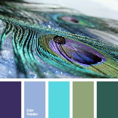 Cold shades of peacock feathers are used in bedrooms. With the help of these colors you will create a gentle, romantic and charming style, filling the spac.