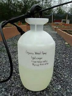 1 gal. Vinegar  2 c.epsan salt 1/4 c. Dish soap .