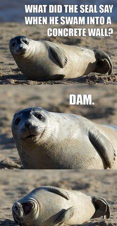 Seal jokes...