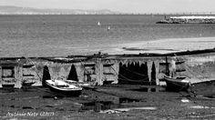 boats - Barcos no Tejo.