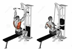 Photo about Reverse grip lat pulldown. Exercising for bodybuilding Target muscles are marked in red. Illustration of middle, shoulder, fitness - 68612577 Cable Workout, Gym Workout Tips, At Home Workouts, Workout Fitness, Muscle Fitness, Mens Fitness, Fitness Studio Training, Fitness Bodybuilding, Sport Treiben