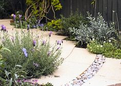 How To Urban Garden How to hide the downspout drainage and still make a walkway. Water Plants, Water Garden, Urban Garden Design, How To Install Gutters, Earth Design, Ways To Recycle, Raised Garden Beds, Container Gardening, Evergreen