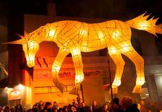 New Zealand light festive parade Lantern Festival, Art Festival, Outdoor Lighting, Fireworks, Lighting Design, Carnival, Lion Sculpture, Statue, Dunedin Events