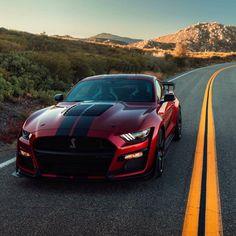 Ford Mustang Shelby Gt500, Mustang Bullitt, 2015 Ford Mustang, Ford Shelby, Ford Ecosport, Car Ford, Mercedes Benz Classes, Hyundai Veloster, Camaro Zl1