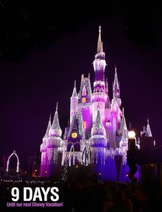 """9 Days until our next Disney Vacation!  We are counting the days to our next Disney trip with our favorite pics taken at the parks. This photo was taken of Cinderella's Castle during the Christmas holiday. The lighting was incredible!  Let us know if you """"Like"""". #disneyside"""