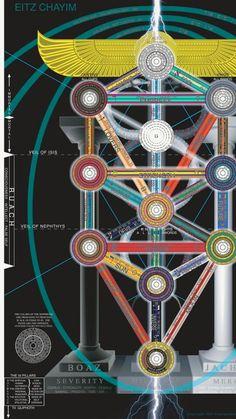 Tree of life summary