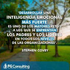 CURSO ON LINE DE INTELIGENCIA EMOCIONAL PRÁCTICA: http://www.inteligencia-emocional.org/curso/index.htm