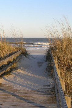 Myrtle Beach State Park in South Carolina provides a quiet escape for the bustling beach.