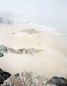 beach fog