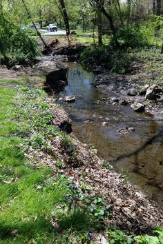 Parks and Playgrounds in Westfield NJ, Mindowaskin creek