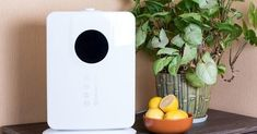 When you set out to improve your home's air quality, consider these shopping tips and top picks for today's best air purifier for allergies. Do It Yourself Home, Improve Yourself, Portable Air Purifier, Itchy Eyes, Cool Mist Humidifier, Air Pollution, Indoor Air Quality, Natural Living, Shopping Hacks