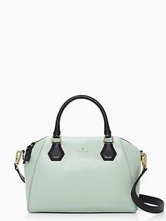 I so badly want a Kate Spade purse!
