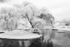 awesome Infrared weddings.