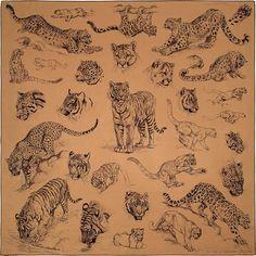 x scarf Hermès Mini Tattoos, Body Art Tattoos, Small Tattoos, Cool Tattoos, Tattoos For Women, Tattoos For Guys, Stylist Tattoos, Tiger Art, Tiger Tattoo