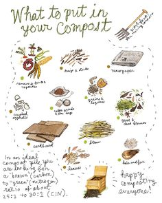 Robin Clugston: COMPOSTING: Greens and Browns