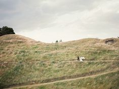 New Zealand Wedding Inspiration | Erich McVey