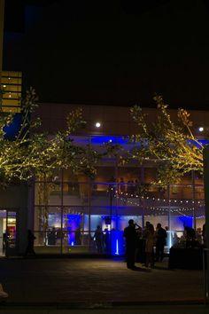 New Courtyard- Crocker Art Museum
