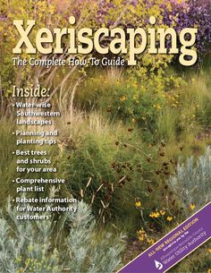Xeriscaping: the Complete How to Guide - Albuquerque, New Mexico