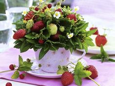 Potted strawberries can be turned in to jam after the big day! | Turn Edible Fruit Arrangements In To Treats After Your Wedding | Green Bride Guide