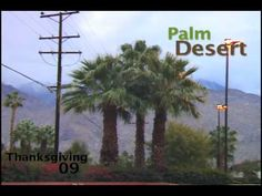 Cory Kennedy - Palm Desert Wildness  #epidemicskate #skateboarding #desertskateshots