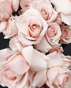 46 Ideas Vintage Flowers Photography Wallpaper Pretty Pink Roses For 2019 Pastel Flowers, Vintage Flowers, Pretty Flowers, Pretty In Pink, Vintage Flower Backgrounds, Pastel Pink, Blush Pink, Roses Pinterest, Happy Spring Day