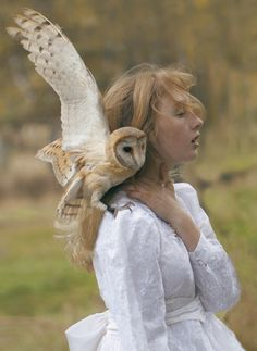 by Katerina Plotnikova: I love owls..hope to have many visitors of this sort in Paradise!