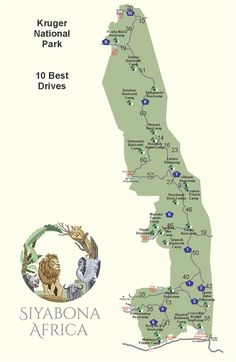 Map of the Ten Best Self-drive Safaris in Kruger Park, South Africa. National Parks Map, Kruger National Park, Road Trip Packing, Packing List For Travel, Mauritius, Cheap Travel Deals, Le Cap, Cape Town South Africa, Self Driving