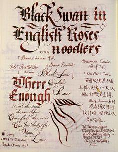 釀古: Noodler's Ink 鯰魚墨水試色:Black Swan in English Roses 英國玫瑰黑天鵝