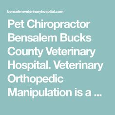 Pet Chiropractor Bensalem Bucks County Veterinary Hospital. Veterinary Orthopedic Manipulation is a non-painful, non-invasive form of chiropractic care.