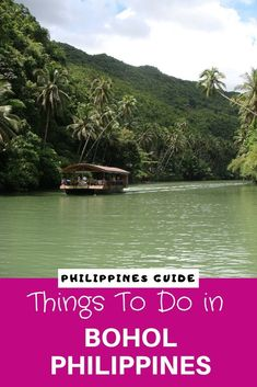 Visiting Bohol in the Philippines soon? With our short travel guide that includes visiting amazing beaches, the Chocolate Hills, Tarsier sanctuaries and much more, you will be kept busy for a fews days. Read this post now or pin it for later read to find out about Bohol. #Bohol #Philippines #travel #traveltips #travelguide #amazingdestination