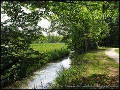 My own photograph, taken near Twickel Castle by Delden in Overijssel, the Netherlands:  http://en.twickel.nl/