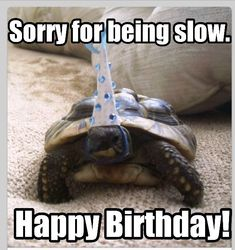 Looking for a happy belated birthday meme? Here are 35 memes to post on your friend's wall to let them know that it's okay to say belated happy birthday. Funny Belated Birthday Wishes, Happy Birthday Best Friend, Happy Birthday Wishes Cards, Happy Birthday Funny, Birthday Memes, Birthday Ideas, Birthday Cards, Late Birthday, Birthday Design